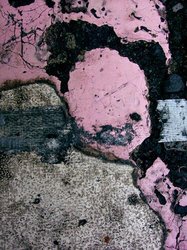 Pink Mao LR copy